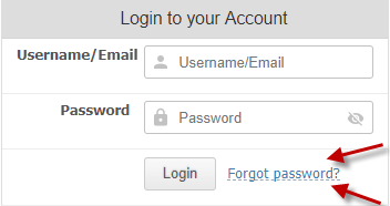 Forgot Password Example